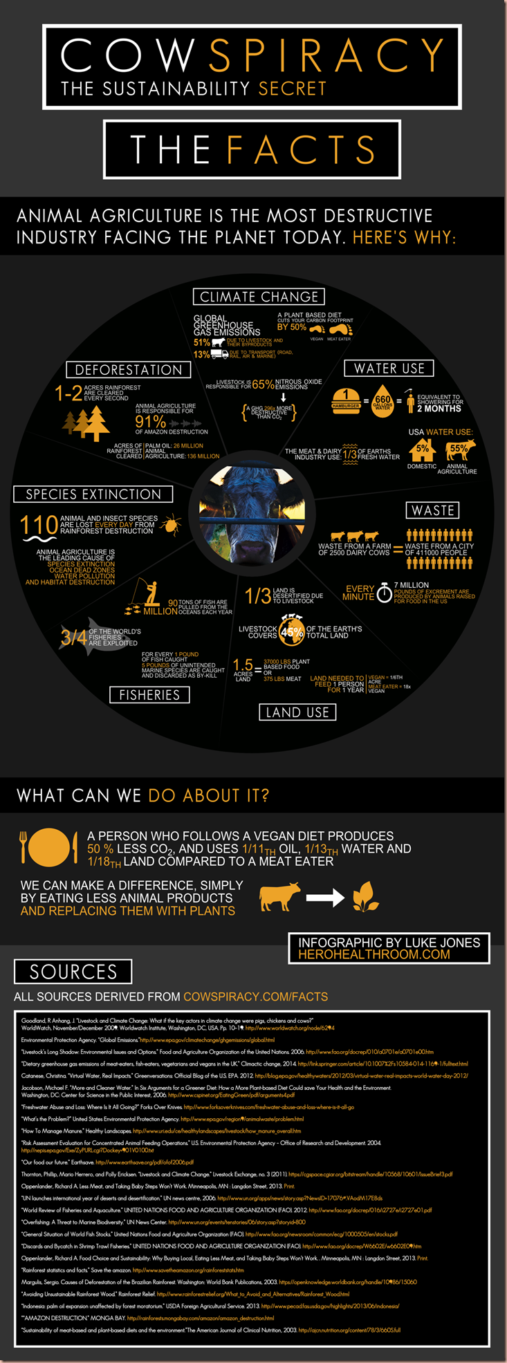 Cowspiracy-Infographic (1)